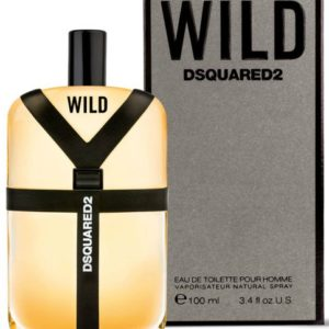 Dsquared2 Wild for men (100 ml / 3.4 FL OZ)